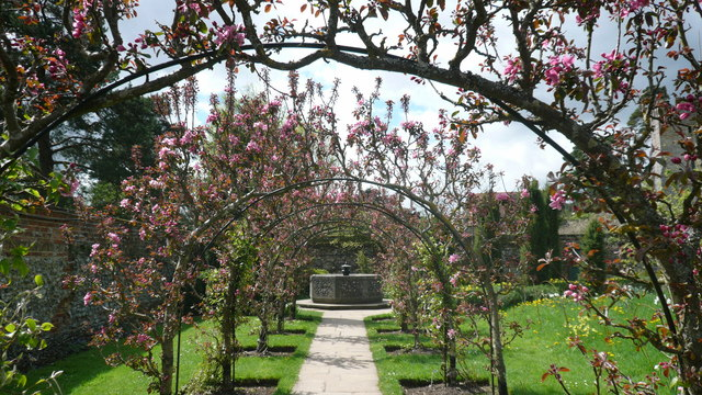 Greys Court gardens - apple arbour