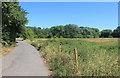 SJ8093 : Hawthorn Lane by Des Blenkinsopp
