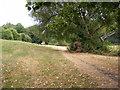 SO9390 : Park Footpath by Gordon Griffiths