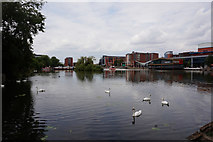 SK9771 : Brayford Pool, Lincoln by Ian S