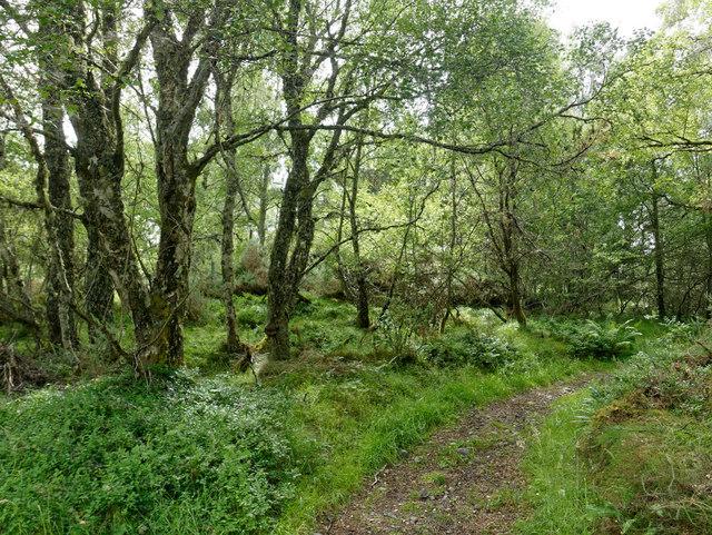 On the footpath to Loch nam Bonnach