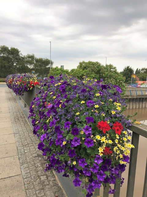 Flowers on Freedom Bridge - Wisbech in Bloom 2018
