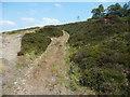 SE0027 : Quarry Track off Height Road, Mytholmroyd by Humphrey Bolton