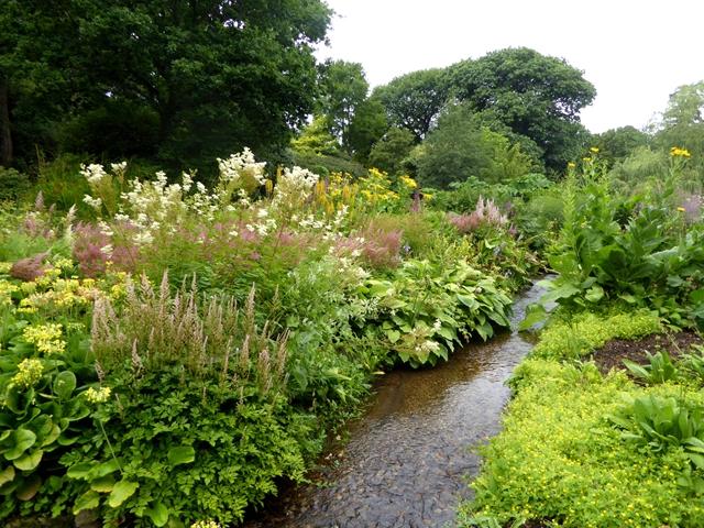 The Bog Garden, Forde Abbey