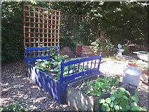 SE2535 : The flower bedroom at Hollybush by Stephen Craven
