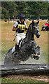 NY4657 : Cumbrian Horse Trials, Warwick Hall - 22 July 2018 (13) by The Carlisle Kid