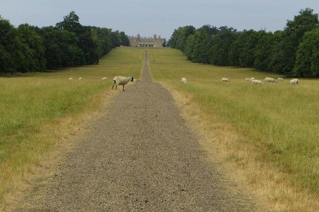 The Avenue, Castle Ashby