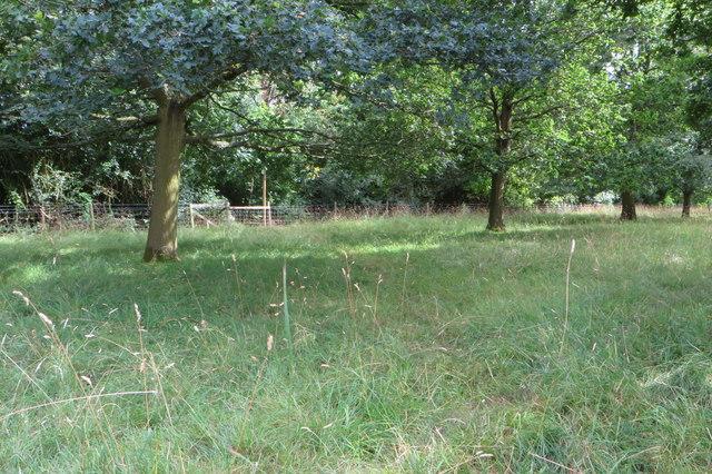 Northamptonshire Round footpath