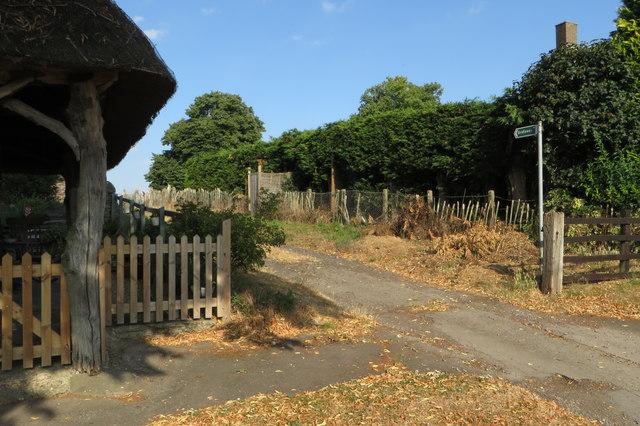 Bridleway to Horns Wood