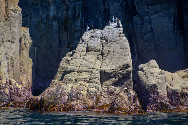 Lundy Island : Jenny's Cove