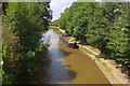 SJ6156 : Shropshire Union Canal, Barbridge by Stephen McKay