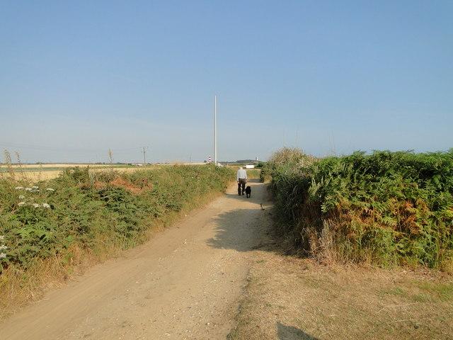 Walking the dog along Doggett's Lane