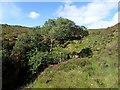 NC3613 : Looking up Tributary of Abhainn Gleann na Muic by Chris and Meg Mellish