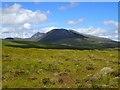 NC3612 : Rough Grassland NE of Loch Meall a' Bhuirich : Week 30