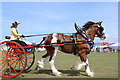 NX0660 : Clydesdale Driven : Week 30