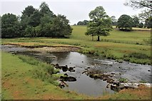 SD9058 : River Aire at Newfield Bridge by Alan Reid