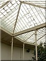 SK5339 : The Camellia House, Wollaton Hall by Alan Murray-Rust