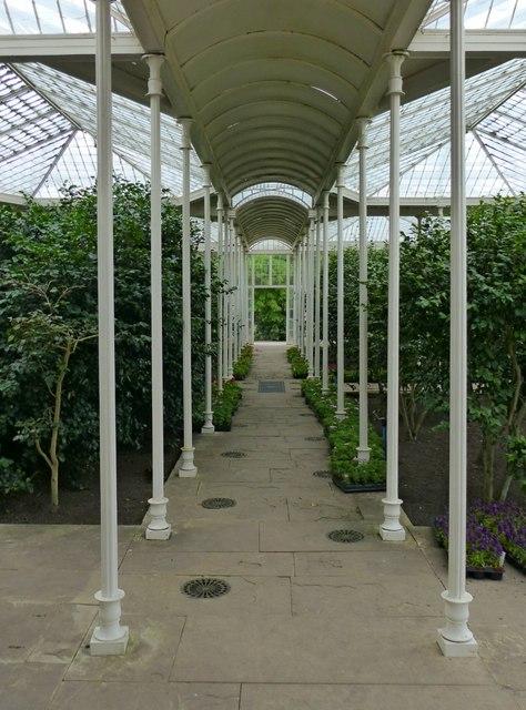 The Camellia House, Wollaton Hall
