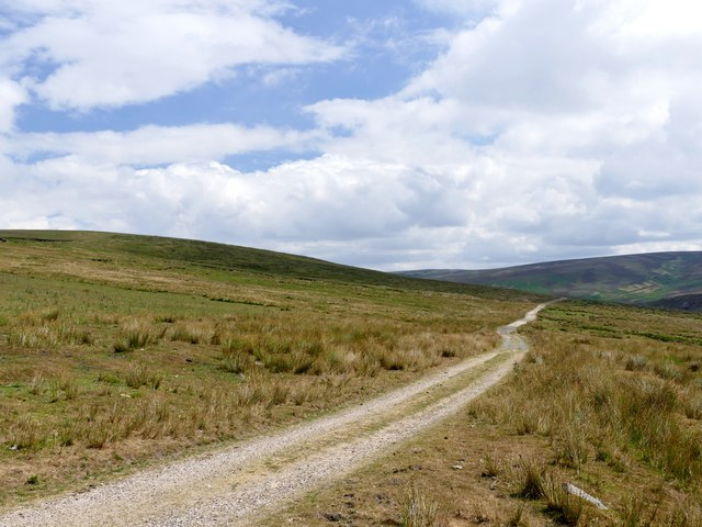 Track across Ironbower Moss