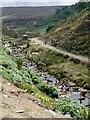 SK1199 : The River Etherow above Woodhead Reservoir : Week 30