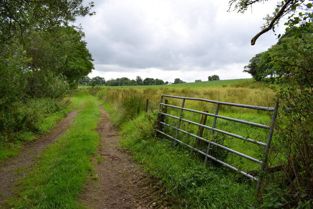 Gate and lane, Bancran