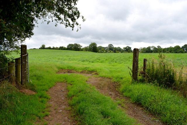 Gate, Bancran / Drumduff