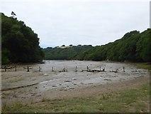 SX6845 : Stiddicombe Creek by David Smith
