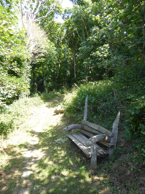 Seat by path in Stiddicombe Wood
