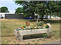TQ3173 : Drinking Trough in Brockwell Park by Des Blenkinsopp