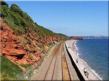 SX9777 : Red Sandstone Cliff towards Langstone Rock by David Dixon