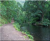 SX7489 : River Teign: view upstream by Martin Bodman