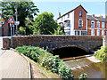 SX9576 : Bridge over Dawlish Water by David Dixon