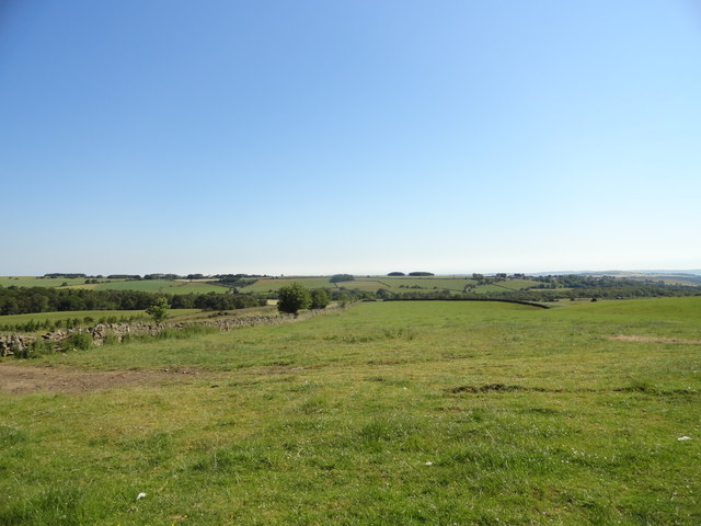 View over the fields east of the lane north of Springwell House