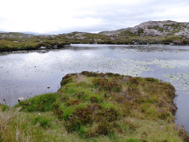 Lilies in unnamed loch south of Loch Tallabreck