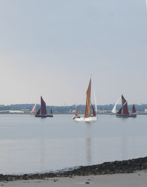 The Thames sailing-barge match, July 2018 (3)