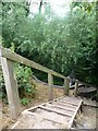SK0816 : Steps down to a culvert, from the Trent & Mersey towpath by Christine Johnstone