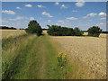TL2380 : Bridleway towards Wood Walton by Hugh Venables