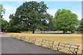 TQ3373 : Seating in Dulwich Park by Des Blenkinsopp