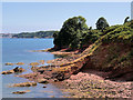 SX8958 : Rocky Shore at the end of Goodrington Sands by David Dixon
