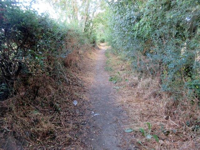 Smugglers Lane (2)