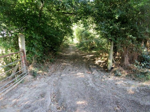 Track to Valewood Lane
