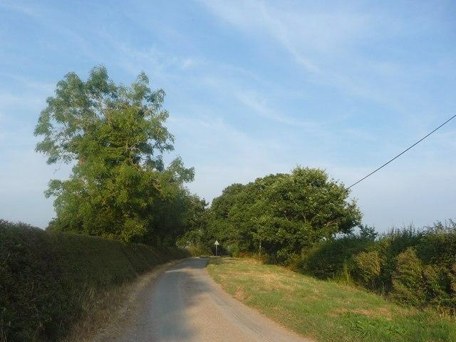 Hobb Lane, heading east from New Thorntree Farm