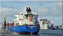 "J3677 : The ""CPO Germany"", Belfast (July 2018) by Albert Bridge"