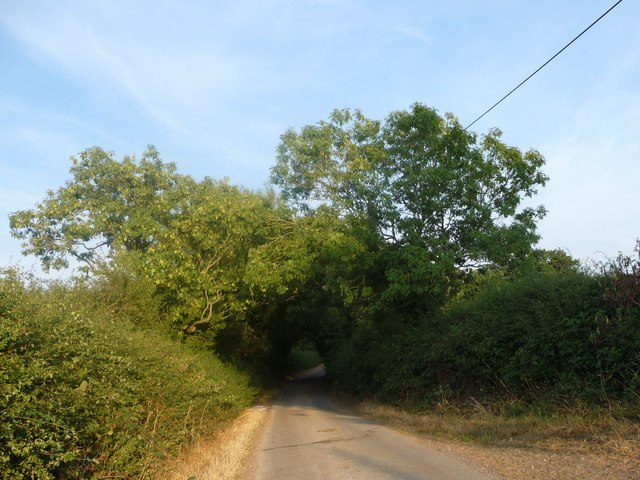 Hobb Lane, heading south-east to Gorsty Hill