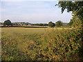 SK1028 : Farmland, Marchington Woodlands by Christine Johnstone