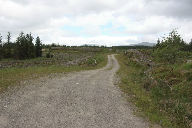 Track in Corrour Forest