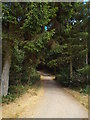 SP7869 : Path near Pitsford Water, Northamptonshire by Malc McDonald