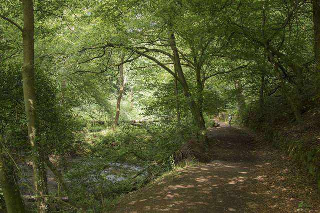 The path through Dimmingsdale