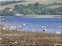 NS0867 : Shore at Port Bannatyne by Thomas Nugent