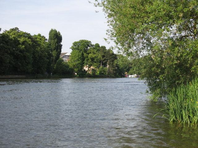The River Thames downstream of Platt's Eyot